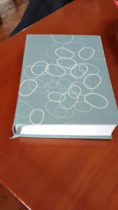 Silver notebook with circles on the cover.  The Decision Book