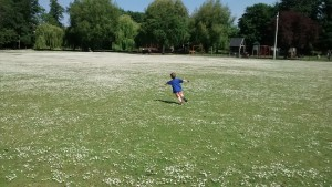 Little boy in a field of daisies, pretending to fly.  Losing my child to school